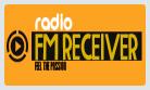 Радио FM Receiver